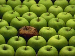 Zhnité jablko